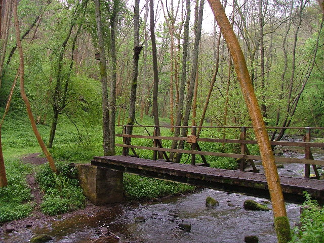 Bogle Bridge, Dunning Glen
