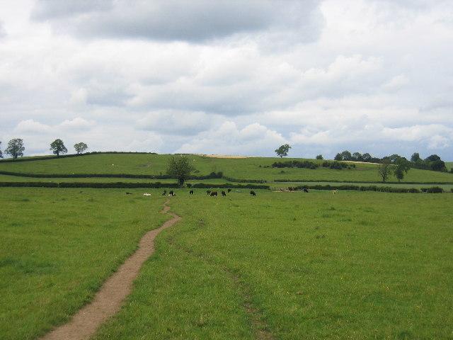 Marton - Frankton footpath