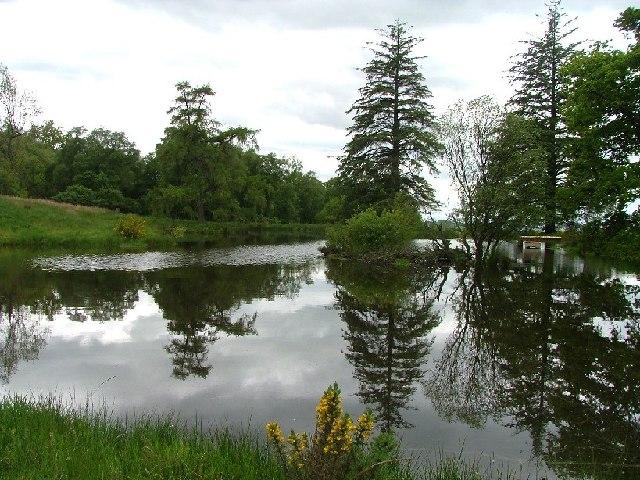 Pond Dunnichen Hill