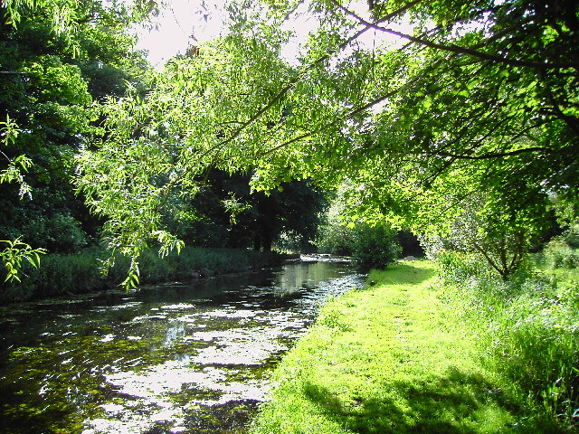 River Granta - Shelford recreation ground