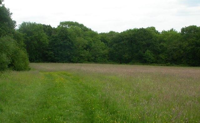 Great Brockhurst Farm