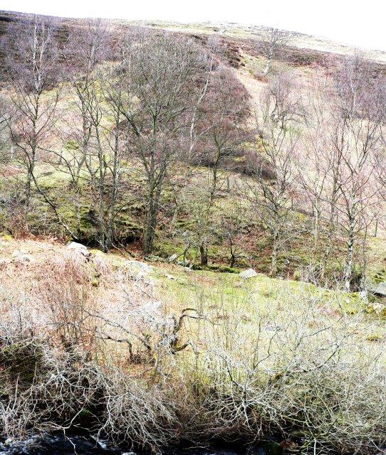 Dunmoor Hill