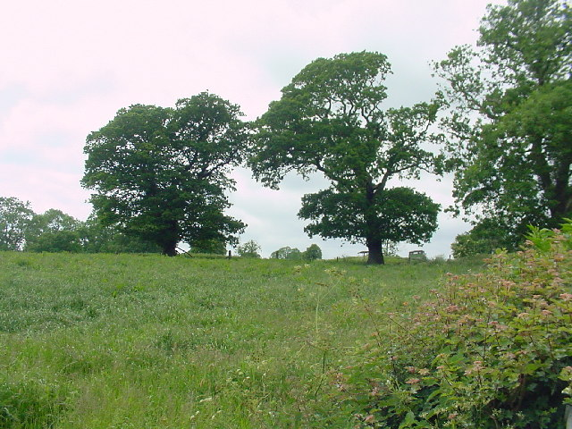 Fields to Southwest of Stoneyford Farm