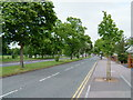 SP3679 : Ansty Road by Kevin Croucher