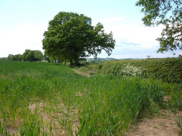 Jurassic Way near East Farndon