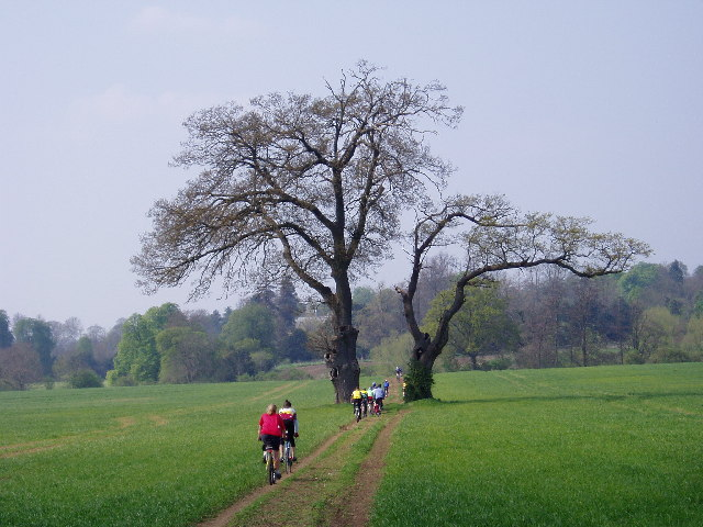 The track to Ettington Park