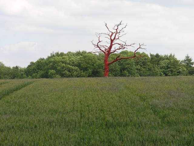 The Very Red Tree