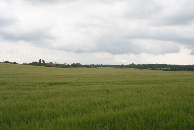 Battledown Farm