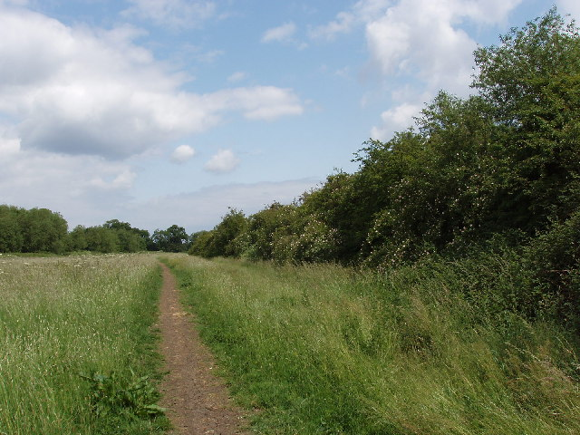 Hillingdon Trail by Ickenham Marsh