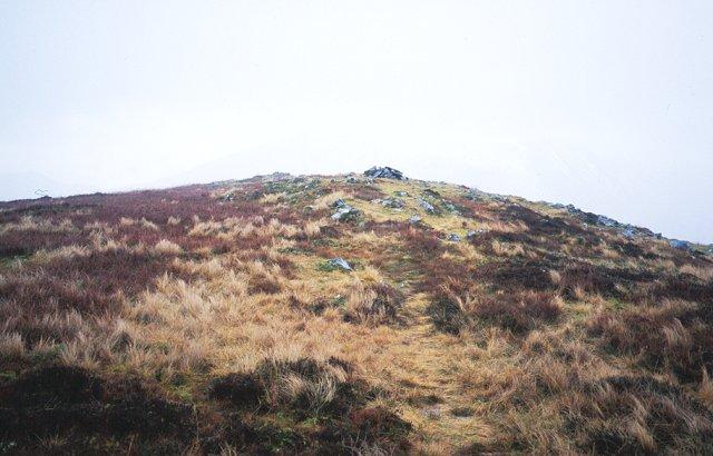 Summit of Tom Meadhoin