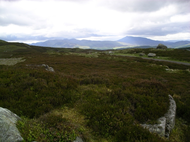 Looking North across the heather