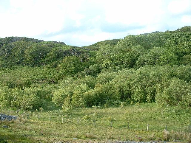 Llyn Cwm Bach, Tremadog