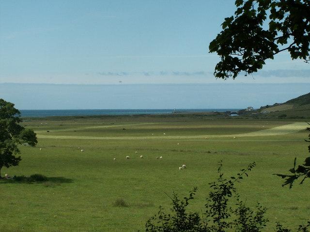 Farmland, Ystwyth estuary