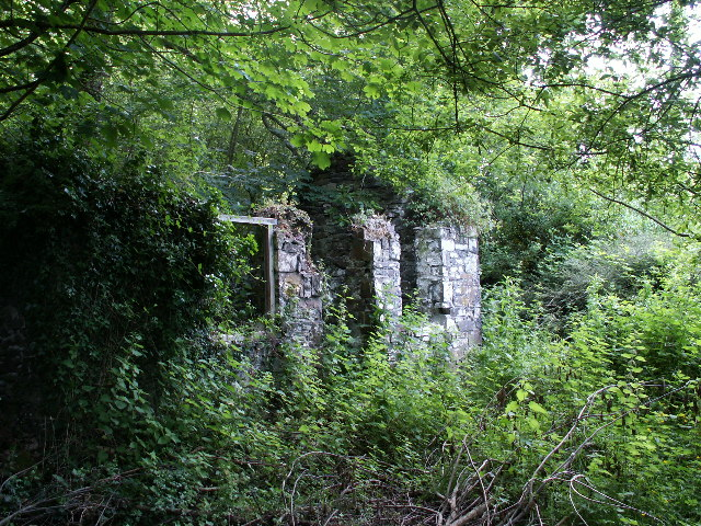 Ruined cottage, Rhyd-y-gwin