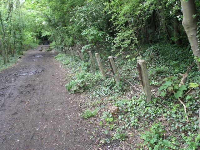 Old Railway Footpath