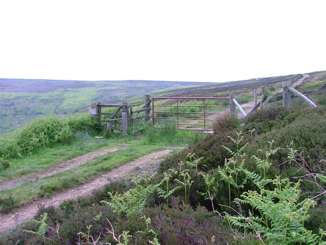 Gate onto Whorlton Moor