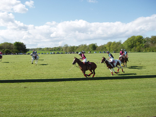 Polo at Cirencester Park