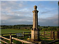 SP6879 : Naseby Monument by Alison Pryce