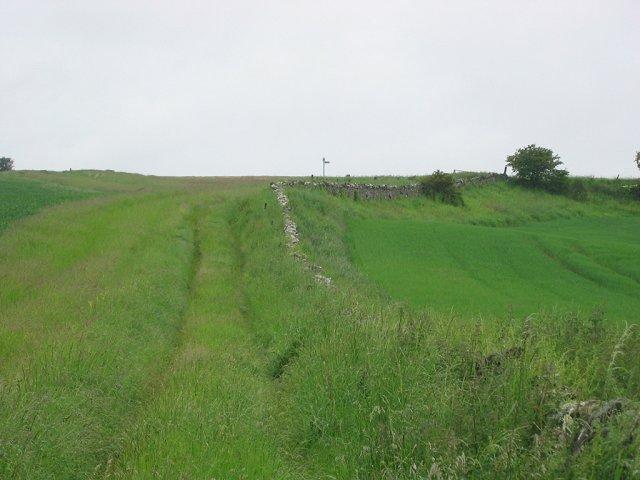 Paths near Athelstaneford.