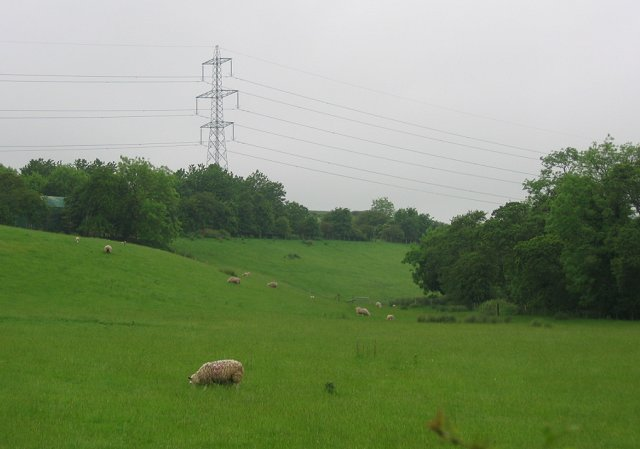 Sheep pasture, Milton Bridge.