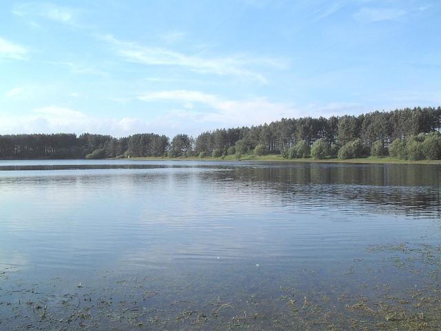 Island Dam