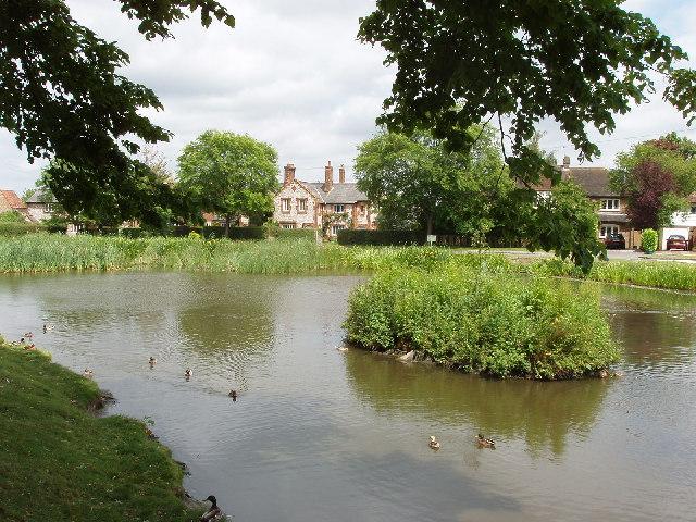 Pond on Tylers Green, near Penn
