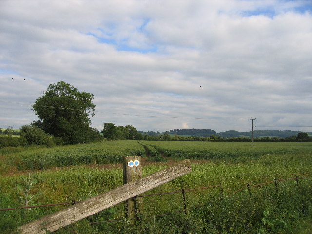 Near High House Farm
