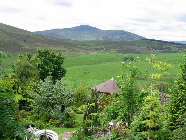 Tulloch garden