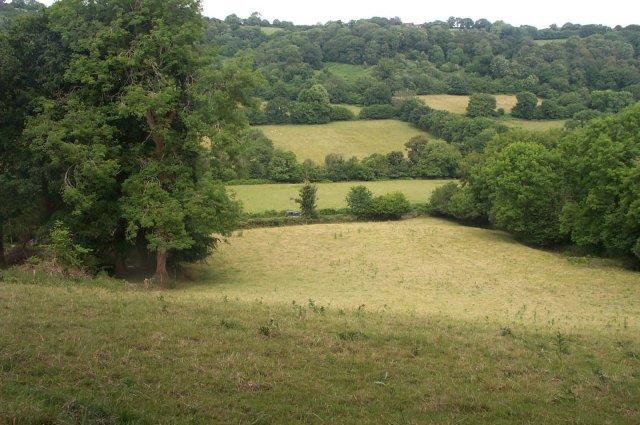 Devon field