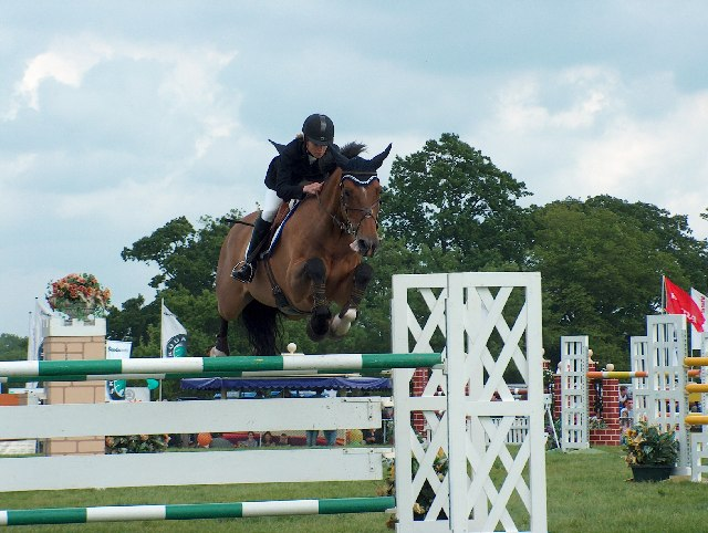 Show Jumper At The Surrey County Show Noel Foster Cc