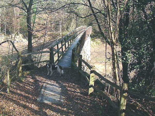 Footpath bridge over the Ardingly reservoir spur