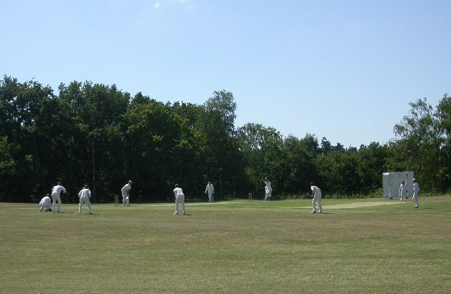 Thursley Cricket Pitch