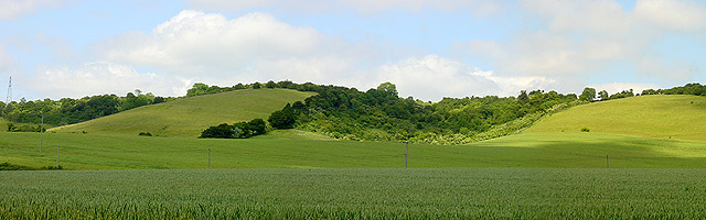 Eden's Hole, North Downs near Hollingbourne