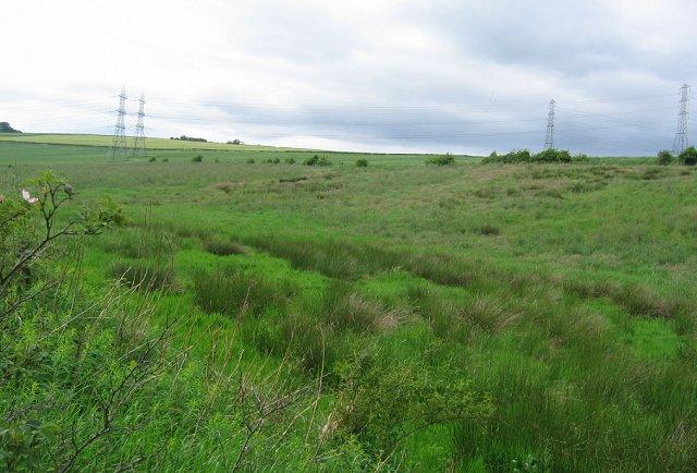 Wetlands, Backhill