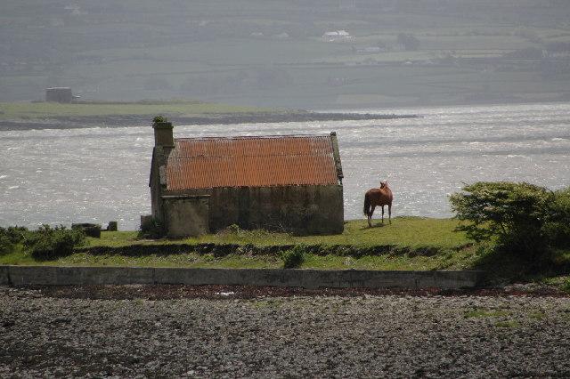 Rusheen Point, Shannon Estuary