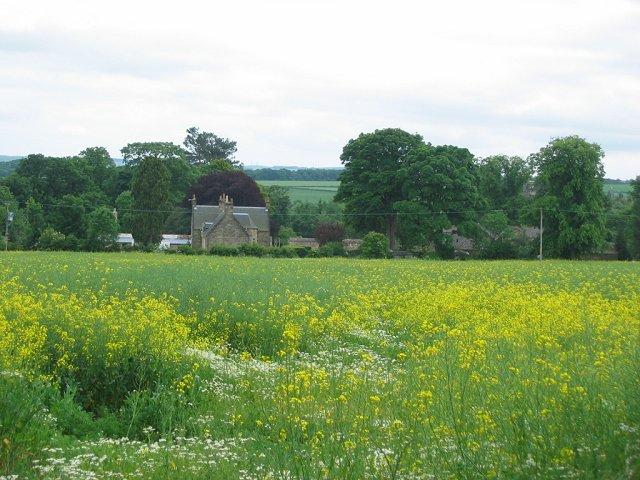 Farm, Winton.