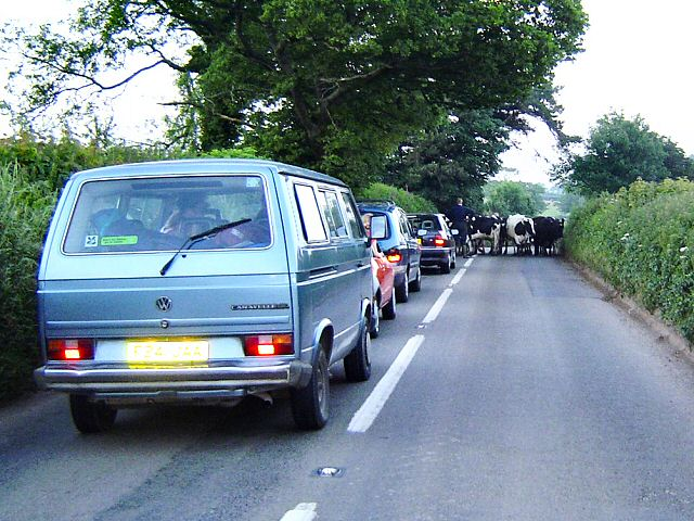 Traffic holdup in the South Hams