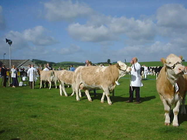 Westmorland Agricultural Show