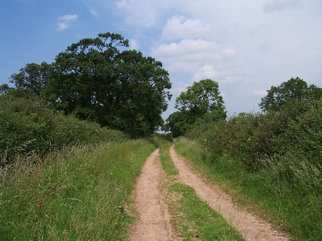 Old Road from Corse to Longdon