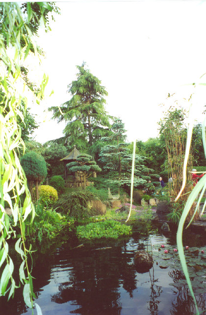 Japanese Gardens, North Clifton