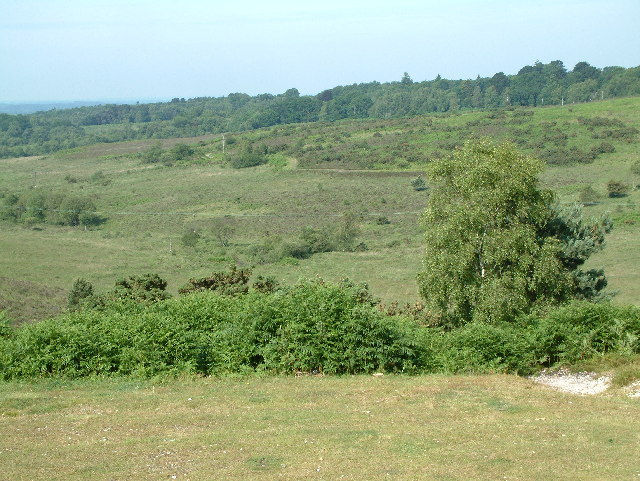 Picket Post, New Forest