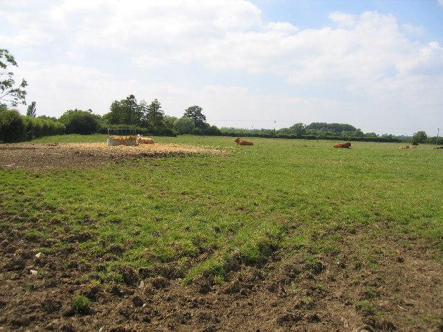 Calcutt Elms Farm