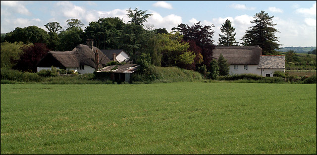 Thatched Dwellings, Kilmington