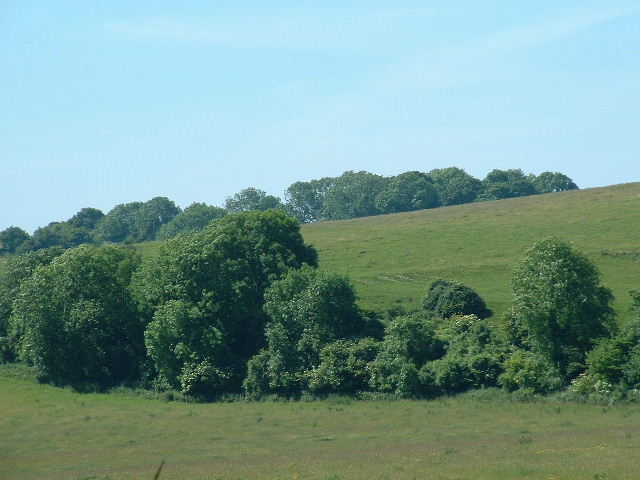 Tenants Hill