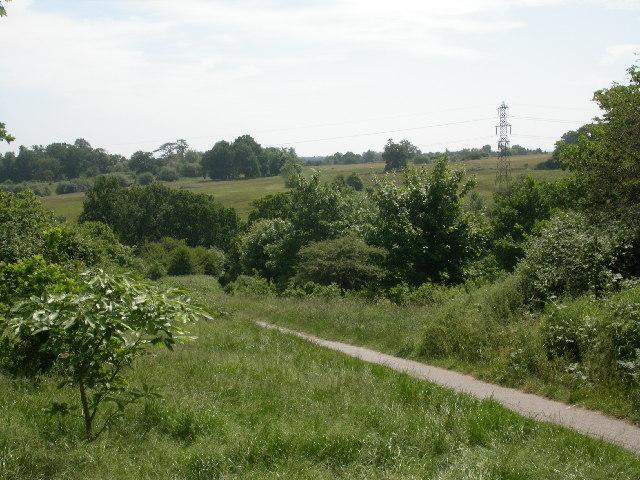 Farnham Park