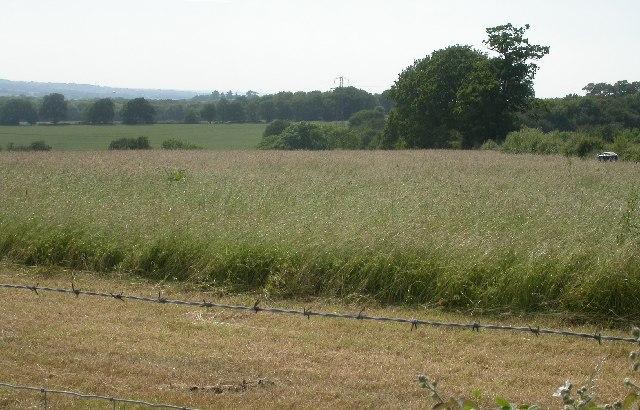 near Upper Old Park