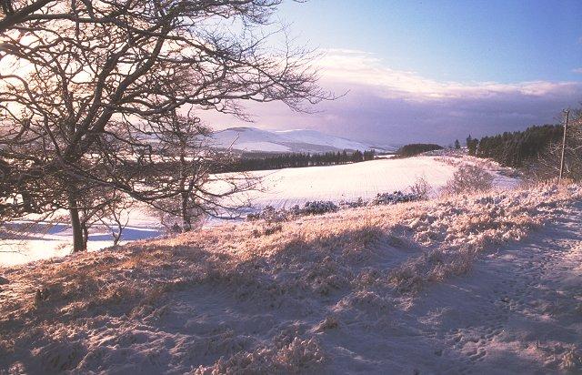 Snow covered farmland, Dolphinton.