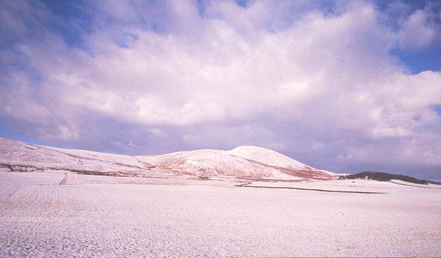 Snow covered fields, Medwyn.
