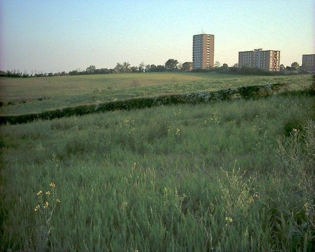 Fields near Lillington