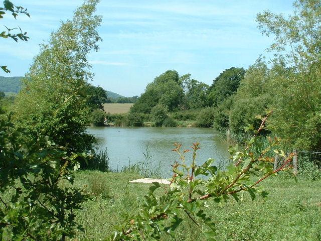Alderwood Ponds